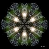 Mandala ''Waldlicht''