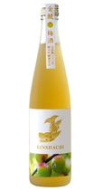 K-810 金鯱 純米吟醸仕込みの梅酒 500ml