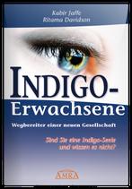 Indigo-Erwachsene (Buch)