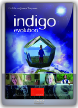 Indigo Evolution