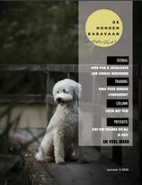 E-magazine 3 2020