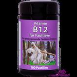 Vitamin B12 kaubar