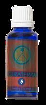CURATERRA® 5 ESSENCE - CONNECTION. Unterstützt maßgeblich Selbsterkenntnis, Veränderungsprozesse und Entscheidungsfreude.
