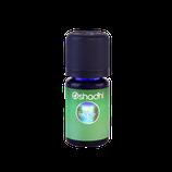 Terra (Duftmischung) - 10 ml