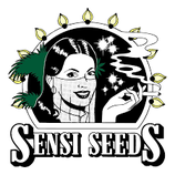 White Widow  - Sensi Seeds