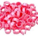Click-ringen 8 mm per 50 stuks, diverse kleuren