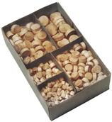 Astdübel-Sortiment Fichte, assortiert 500 Stück