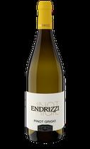 2019 er Pinot Grigio Trentino DOC