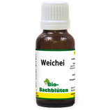 Bio-Bachblüten Weichei 20ml
