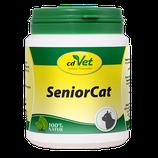 SeniorCat