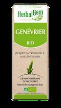 GENEVRIER BIO MACÉRÂT MÈRE 50 ml HERBALGEM