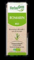 ROMARIN BIO MACÉRÂT MÈRE 50 ml HERBALGEM
