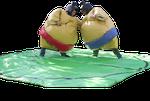 Paire de costumes sumo pour adultes