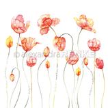 Designpapier *Viele Tulpen rot orange*