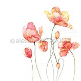 Designpapier *Große Tulpen orange*