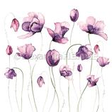 Designpapier *Viele Tulpen violet*