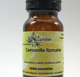 Camomille romaine Bio
