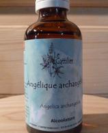 Angélique archangélique