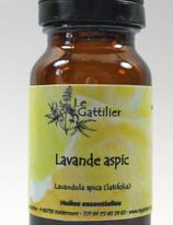 Lavande aspic Bio