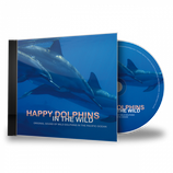 Happy Dolphins in the wild