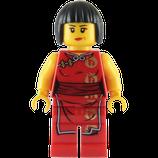 LEGO 2507 | NYA