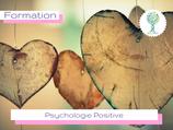 Psychologie Positive Pré-inscription