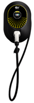 Public - Bee Meter Cable Type 2 - Onyx