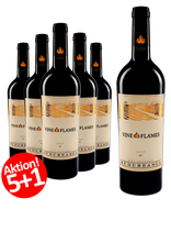 6-er Weinpaket - Merlot  | The Vine in Flames 2013 | 5 +1 GRATIS-AKTION