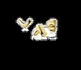 Zilveren oorknoppen geel verguld glad V-vorm