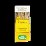 Olio essenziale canfora alta natura