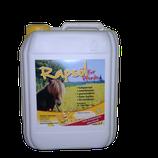 Rapsöl für Pferde