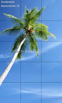 Deckenbild Produkt 25 für Rasterdecken/Systemdecken