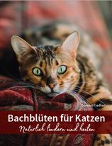 Bachblüten für Katzen - natürlich lindern und heilen