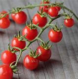 Barbaniaka (tomate groseille rouge)