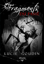 Fragments du passé (Lucie Goudin)