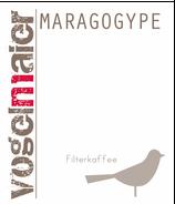 Maragogype  - Filter