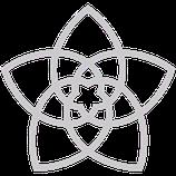 Blume der Liebe (Venusblume)