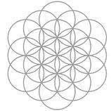 """Blume der """"Schöpferkraft"""""""