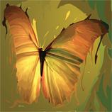 Kunstwerk: Happy Butterfly
