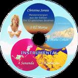 GSi01 instrumental | blau aqua gelb magenta