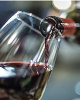 Dégustation du vins 5 verres