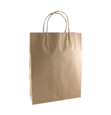Paper Carry Bag | BRO-CAR-B2