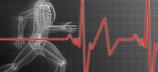 Leistungsdiagnostik - Laufbandstufentest