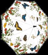 Regenschirm - Schmetterling