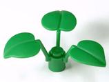 5 x Moeras     plant 3 bladeren groen