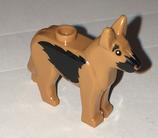Herders    hond 2
