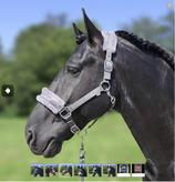 Grey- Strong-Horse