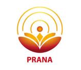 Prana Heilung Grundkurs / P1