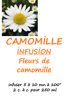 CAMOMILLE 100 G