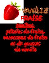 VANILLE FRAISE 100 G
